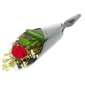 Rode roos mooi verpakt