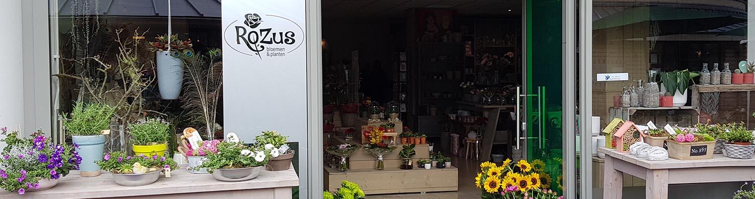 RoZus bloemen en planten Warnsveld